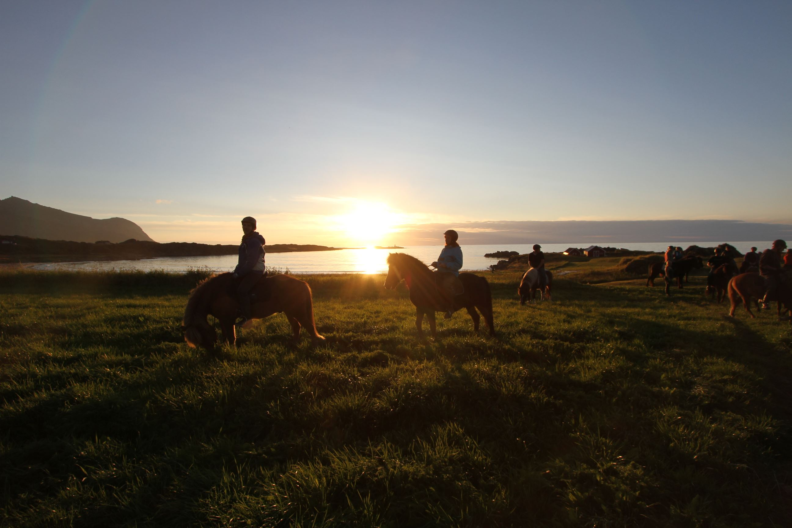 Lofoten by horse - Horseback riding on icelandic horses in Lofoten
