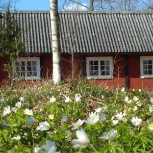 Långasjö, STF Gästehaus