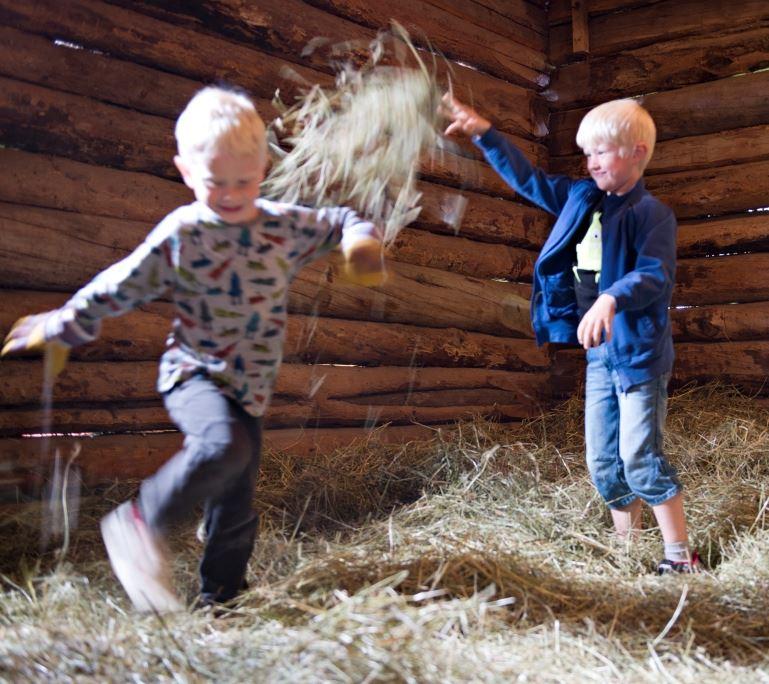 Emelie Sigfridsson/Vbm, Summer at Västerbotten museum