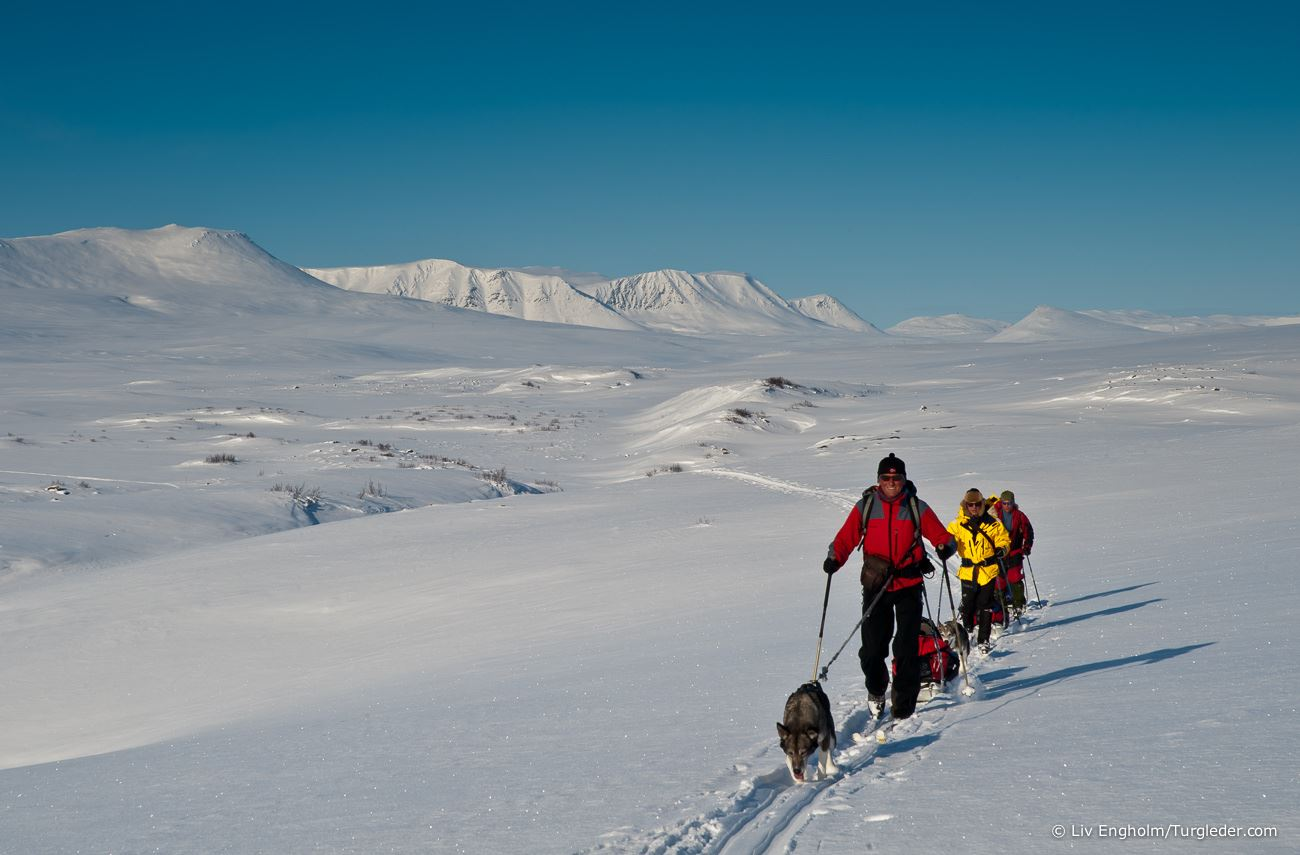 9 days - Finnmark Plateau West – East Skiing Expedition