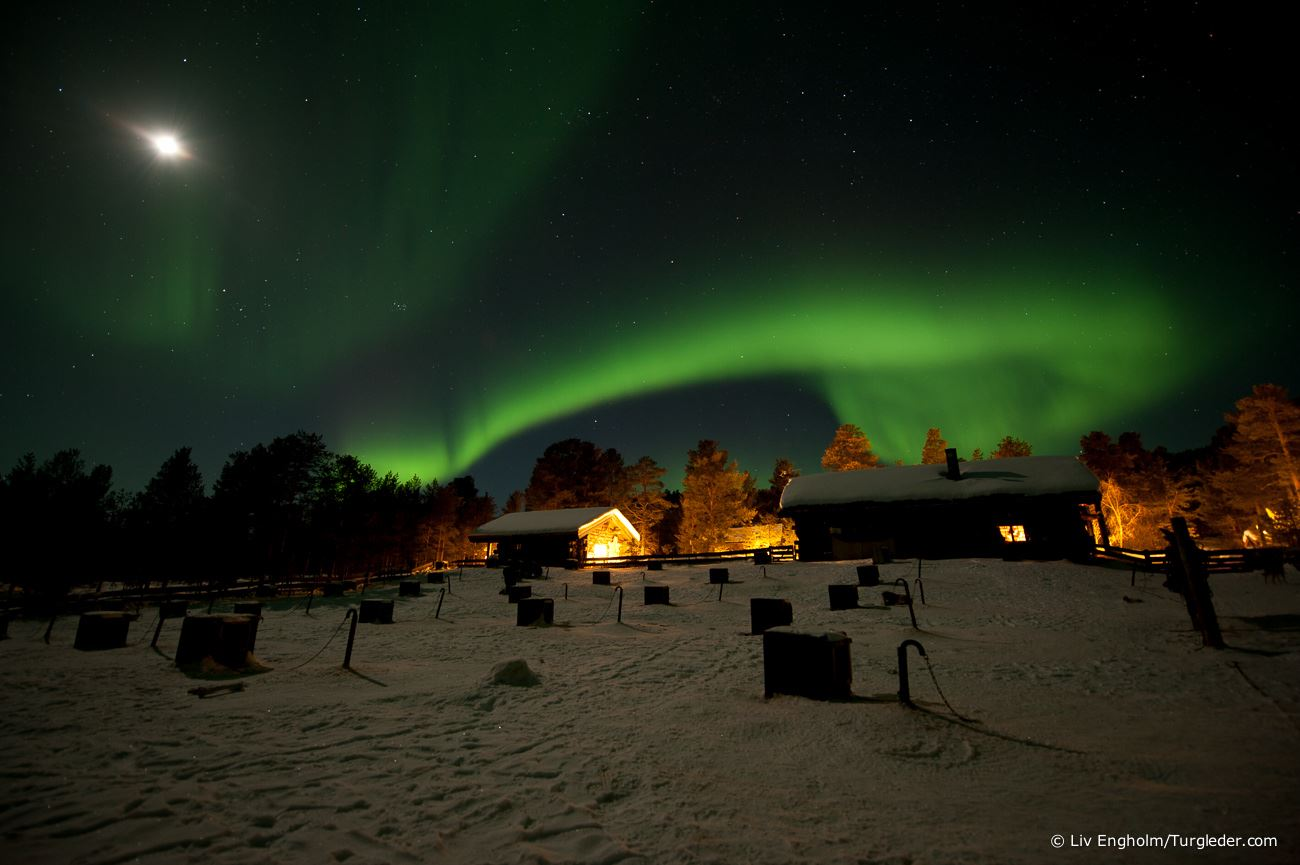 Northern light activity week