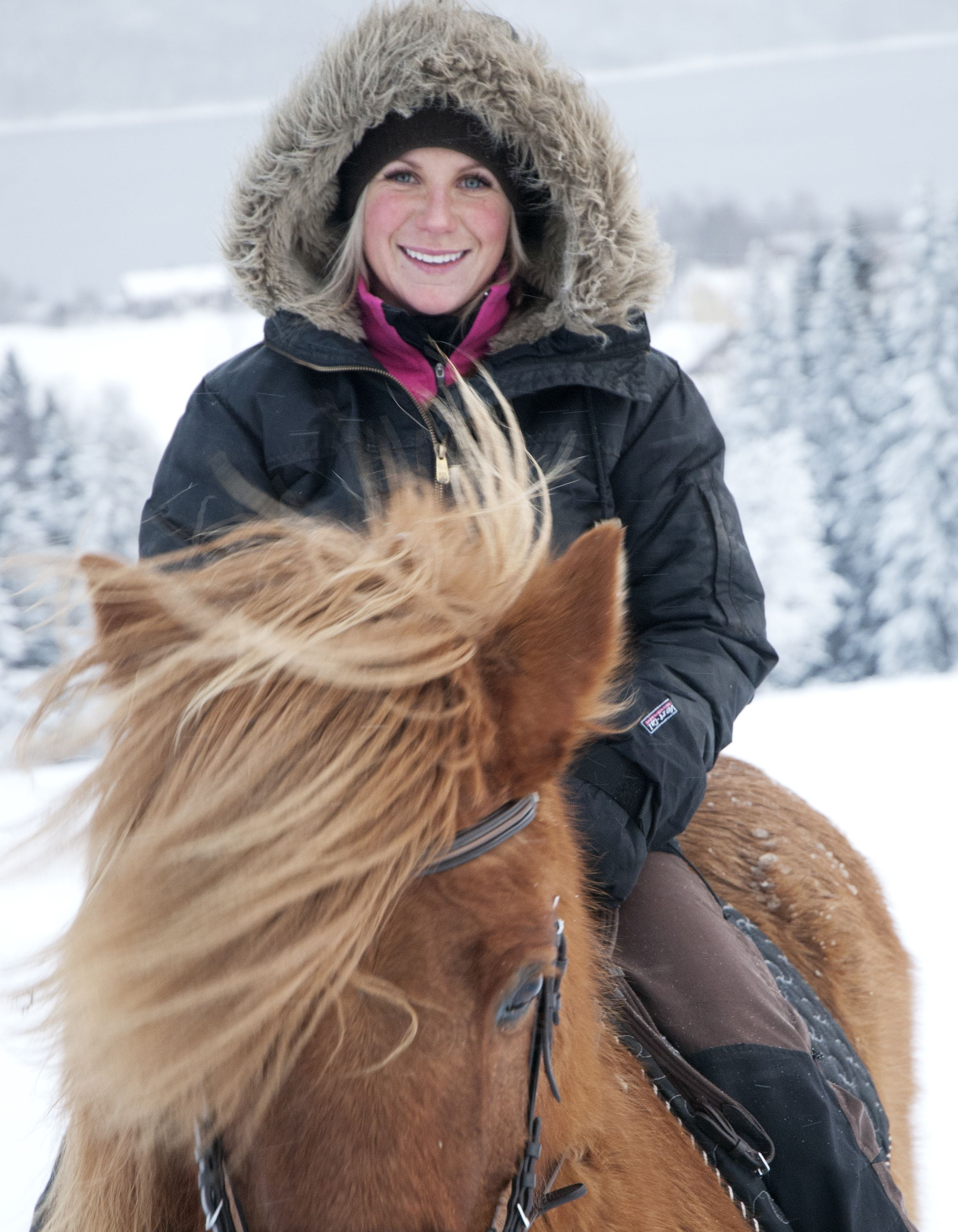 Enjoy a great mountain experience from horseback