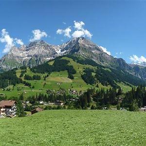 Alpengruss (CH3715.660.1)