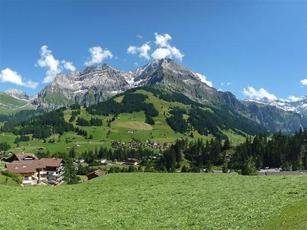 Lägenhet för upp till 4 personer med 1 rum på Alpengruss - Adelboden