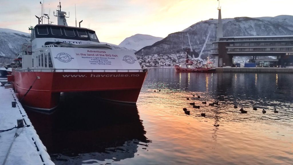 Fisketur i blålystimen– Sørøya Havfiskecruise