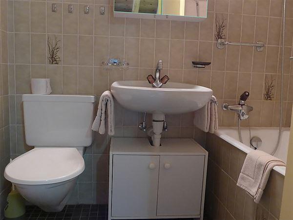Lägenhet för upp till 5 personer med 3 rum på Aparthotel Monte Rosa - Täsch