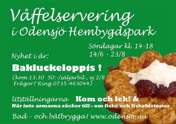 Swedish Waffles in Odensjö!