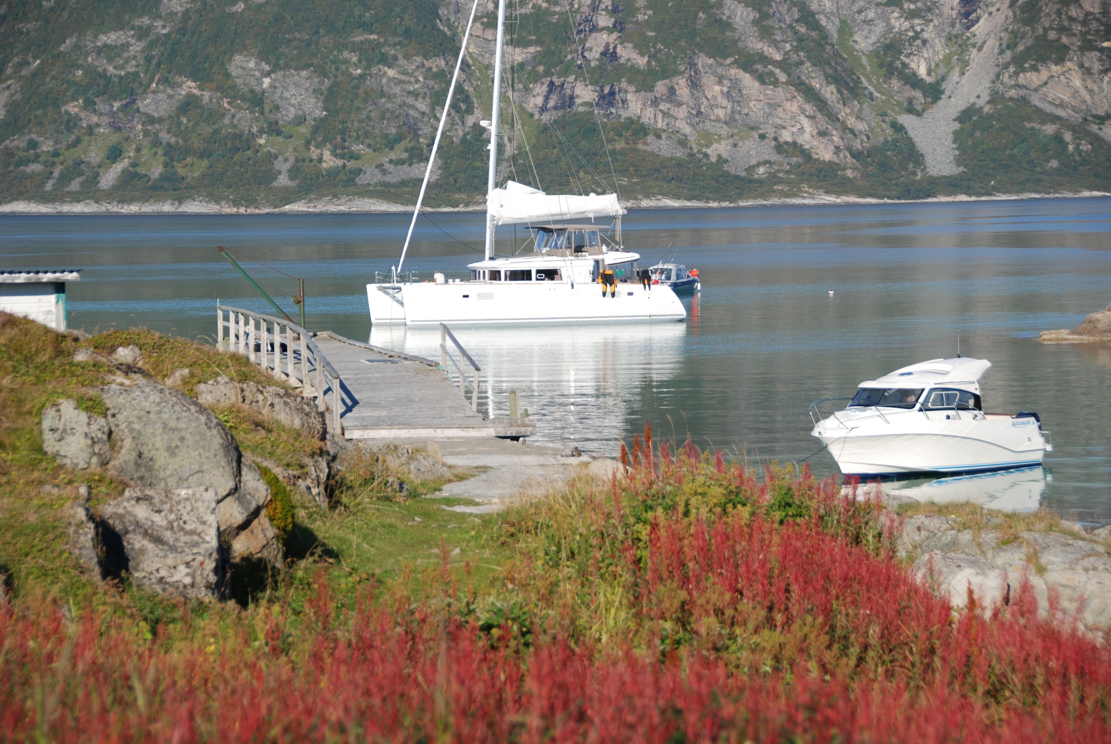 2 dagers VIP tur til vakre Risøy - Arctic Cruise in Norway