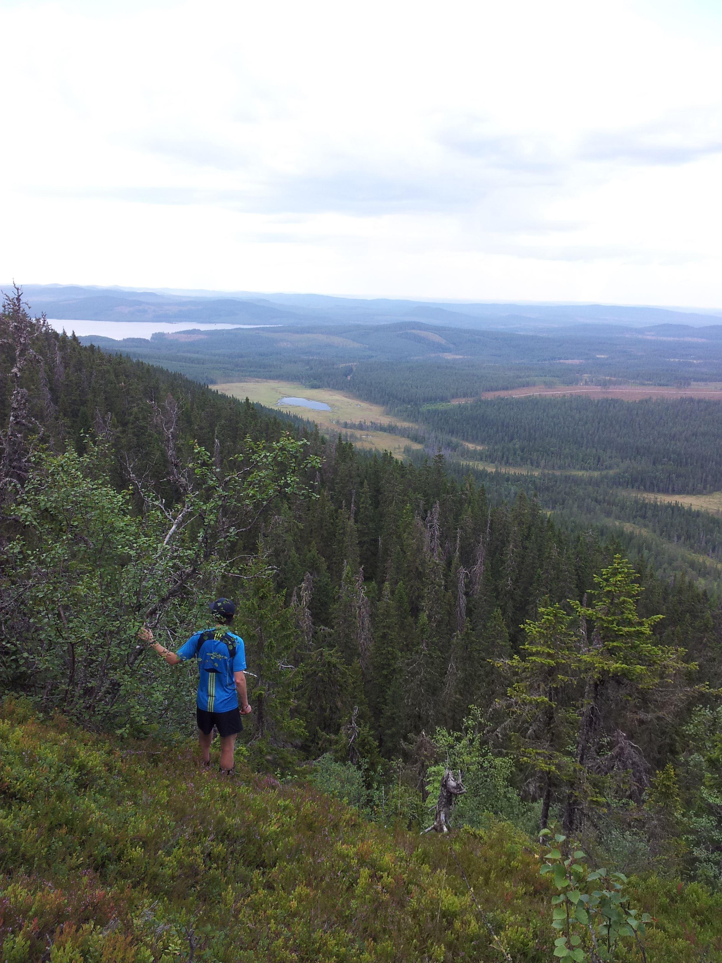 Korpimäki- vandring upp på Orsas högsta berg