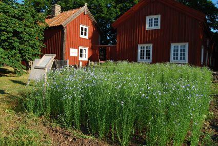 Världsarv och borgar på södra Öland