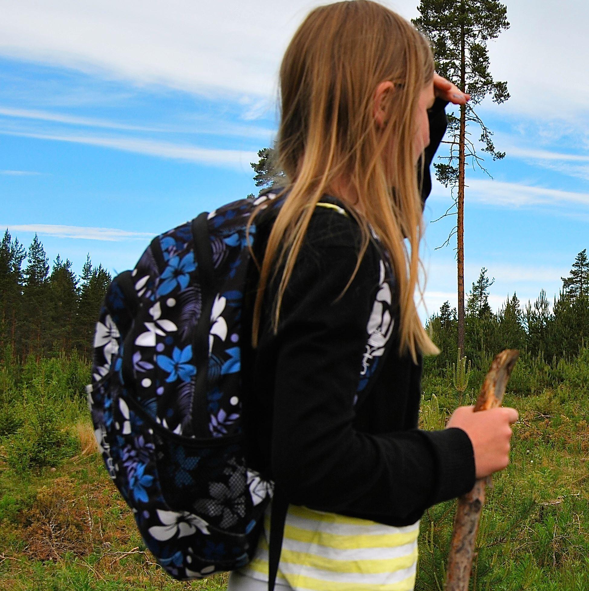 Vandringsfestival i Rättvik - Bäverspaning