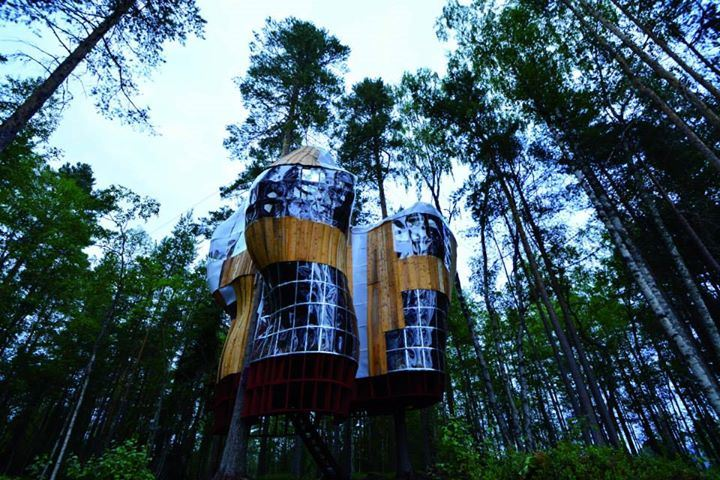 Islands Tree Houses