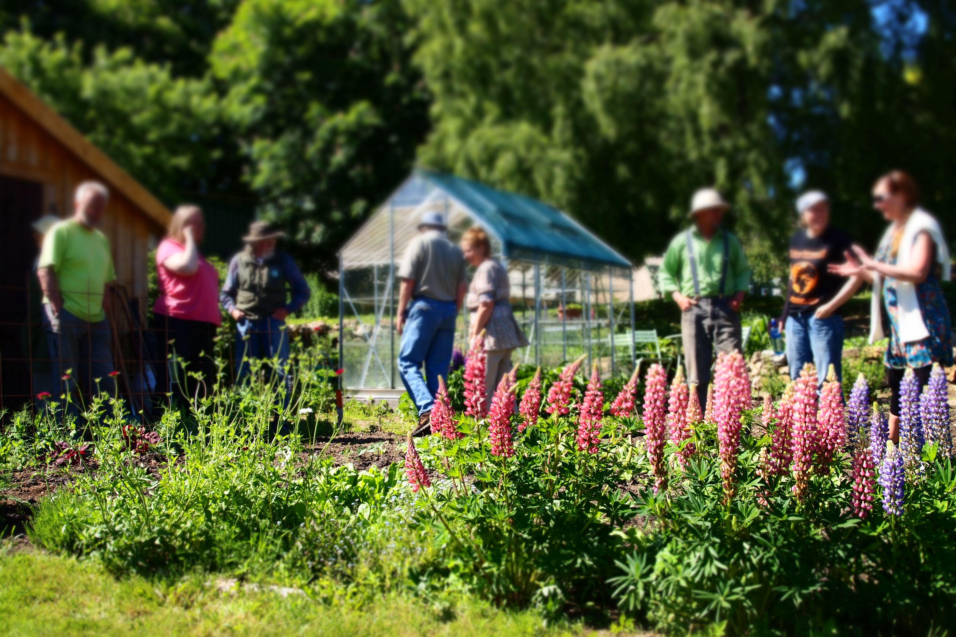 Permakulturträdgård på Ecotopia