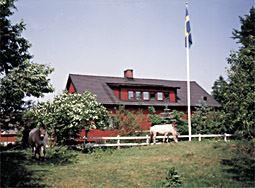 Oråsgården - Bo på lantgård