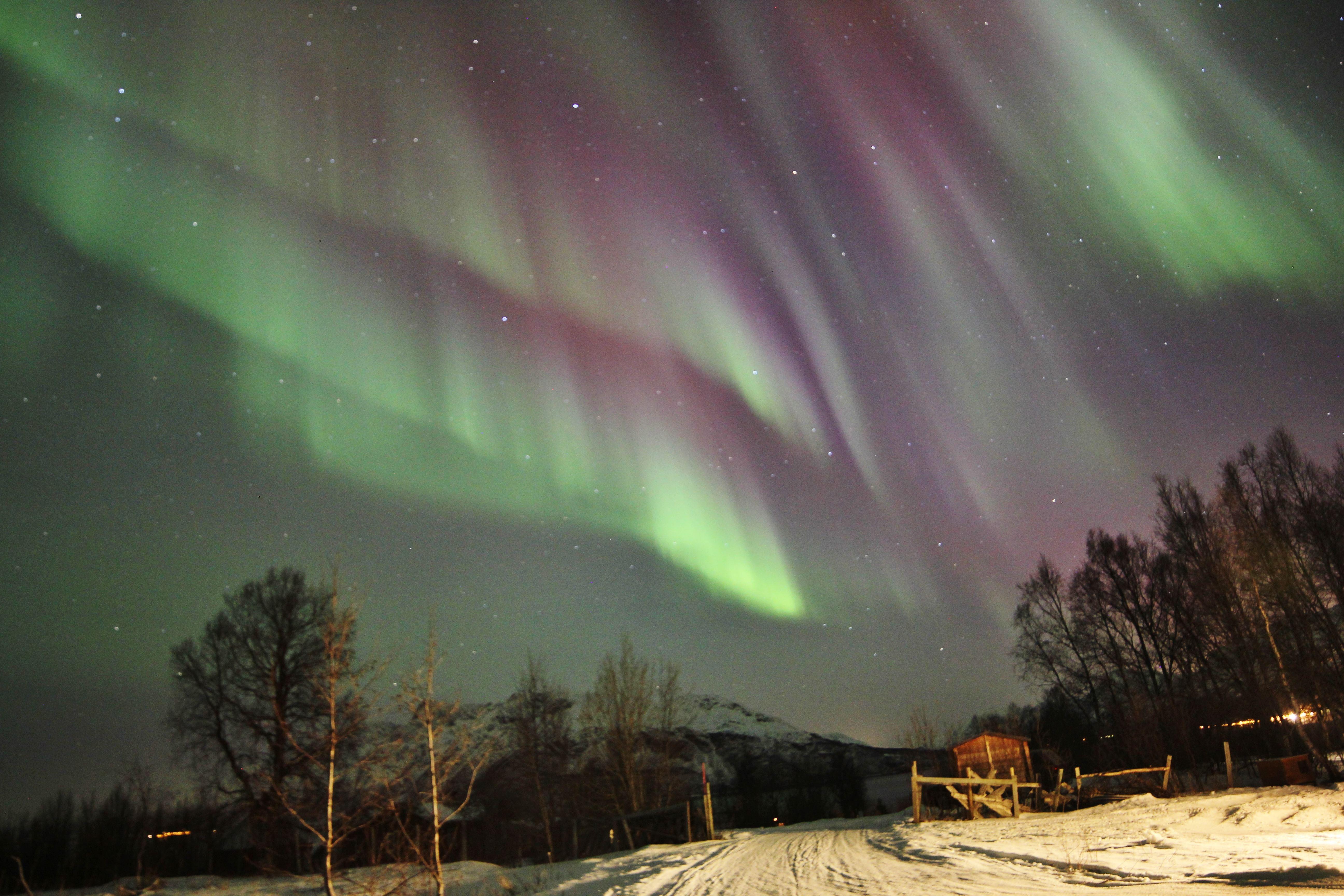 Skumringstur på snøscooter og nordlys på Aurora Alps basecamp - Aurora Alps