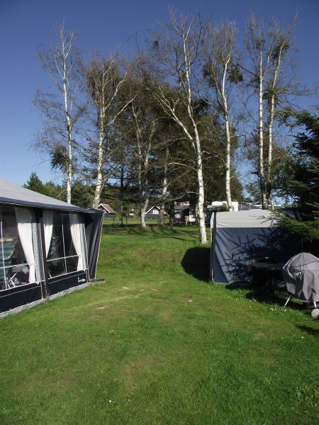 Guldager Camping