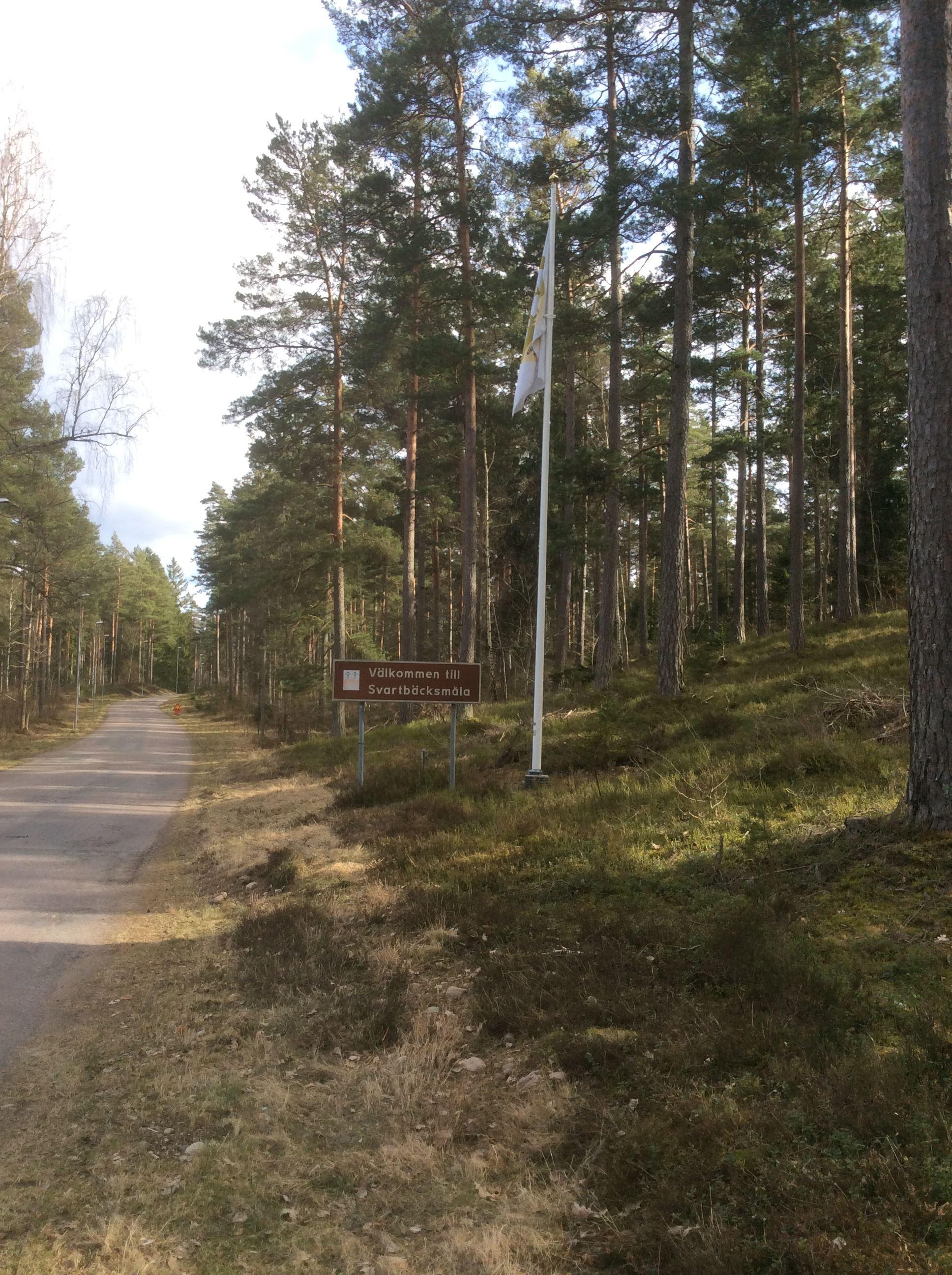 Natur- & Kulturguider i Glasriket - Skogsvandring
