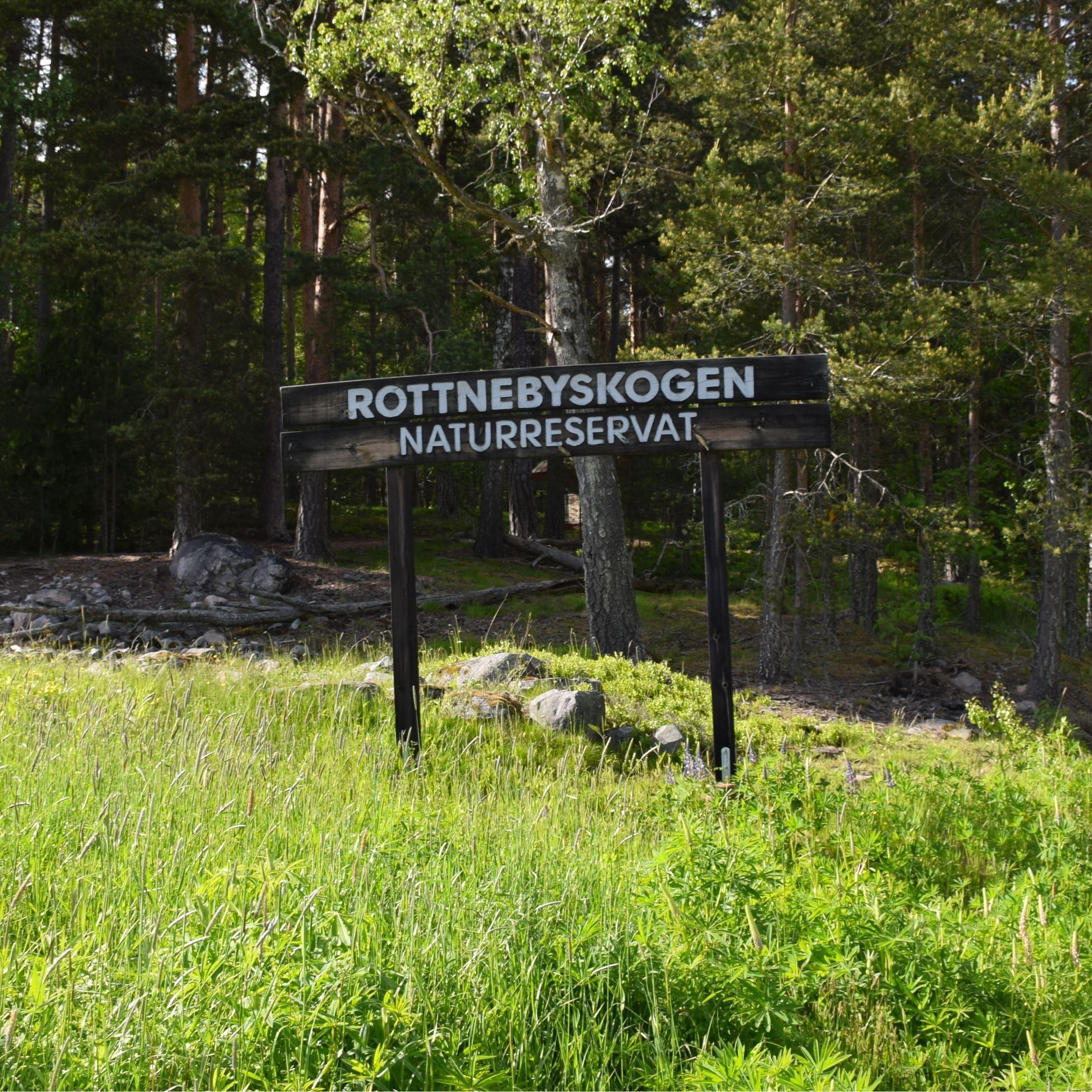 Mattias Boman, Rottnebyskogen Nature Reserve