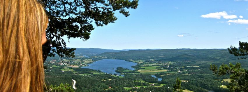 Swedish Countryside – Rent a local