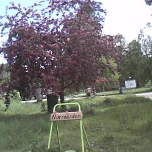 Norrgården