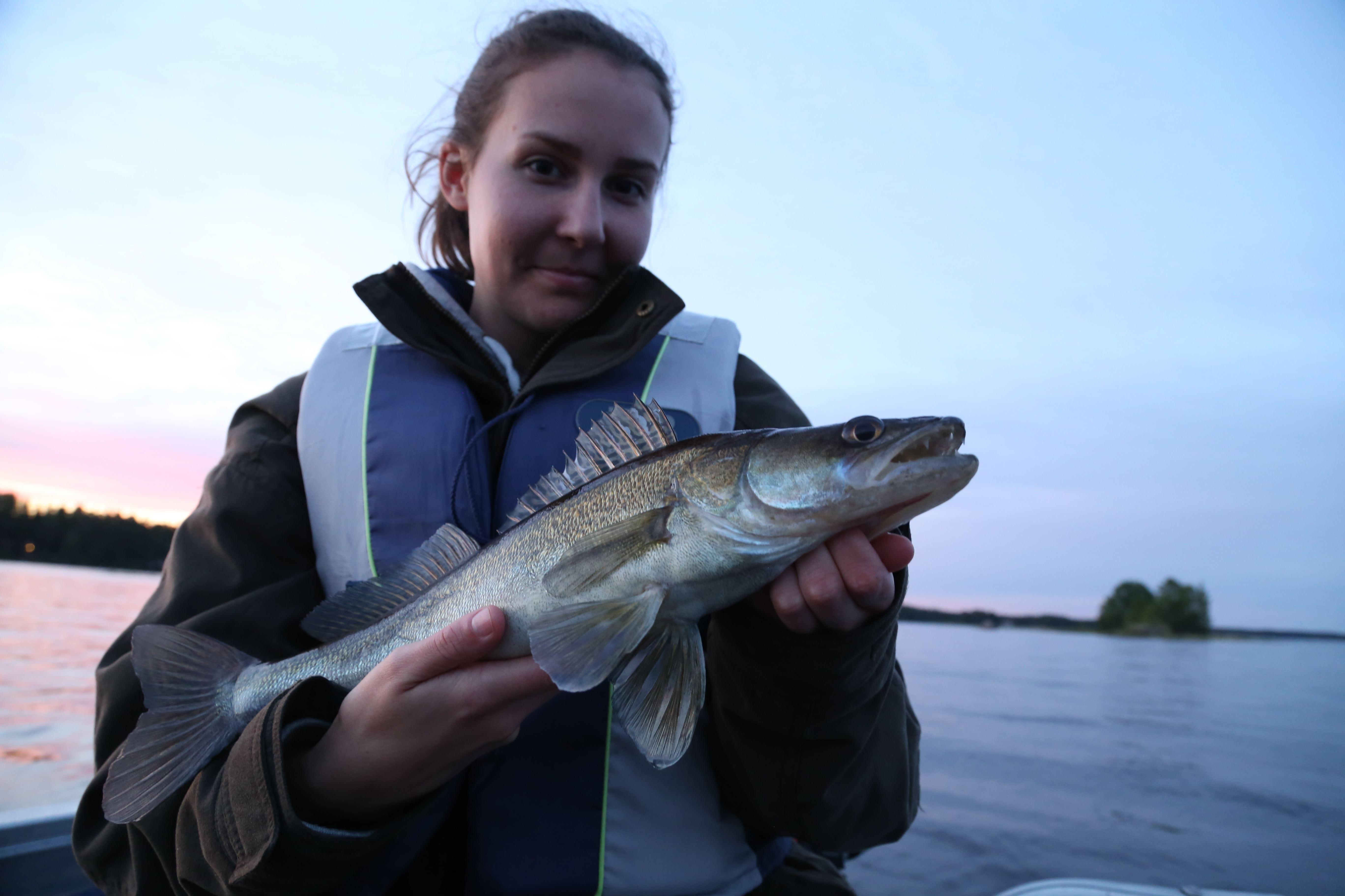 Friskens Fiske