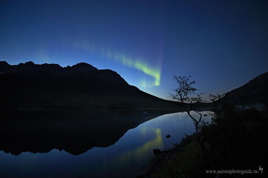 The Relentless Aurora Chase - AuroraPhotoGuide