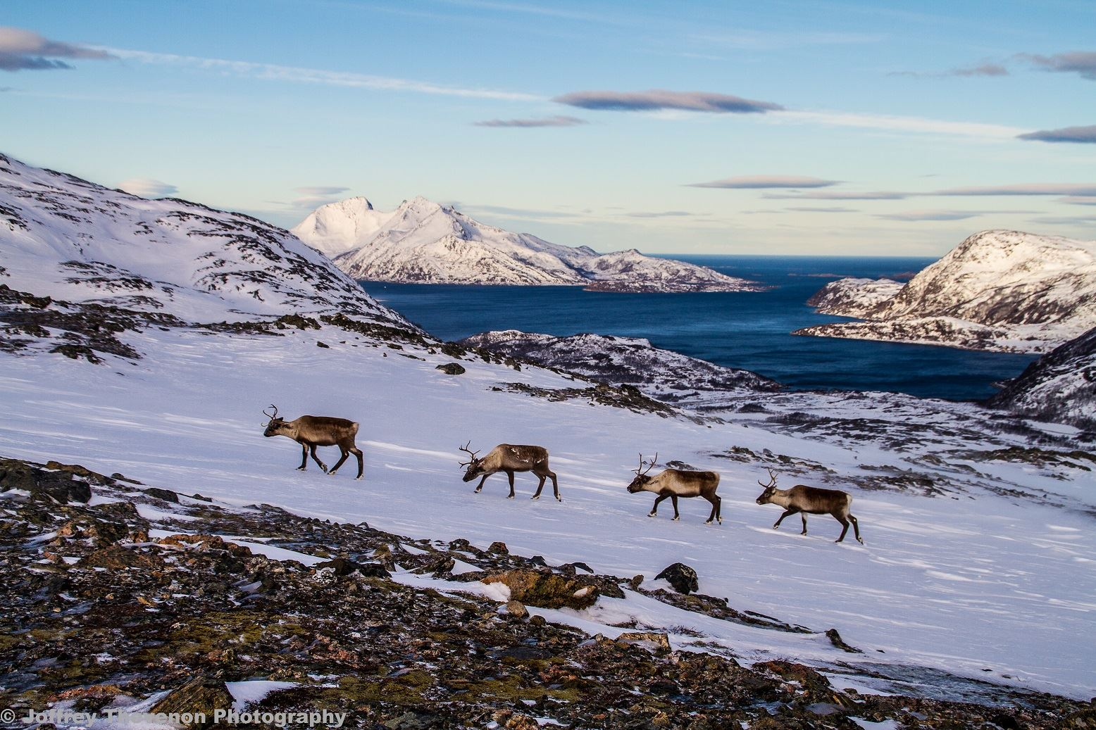 The Ultimate Fjord Excursion by Car – Arctic Explorers