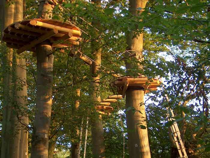 Parcours aventure ACCROBRANCHES