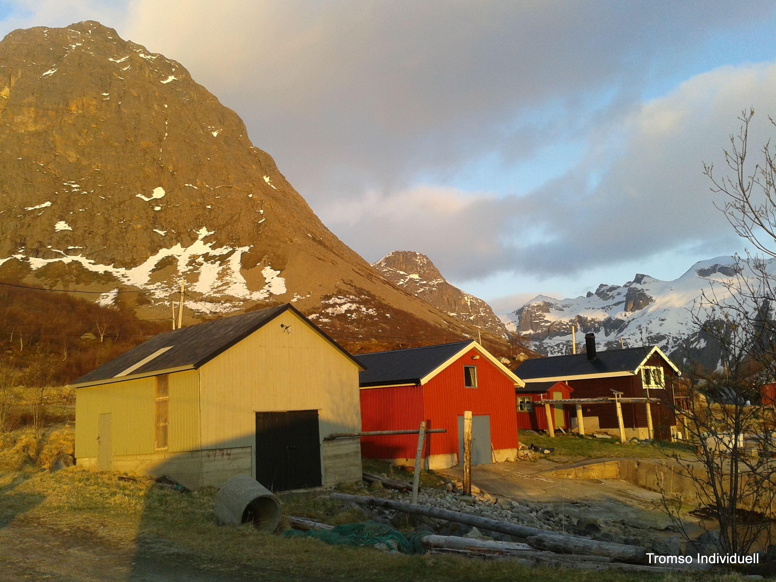 Midnattsolttur med bil og til fots - 4,5t - Tromsø Individuell