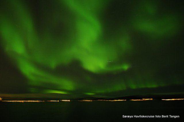 Northern Light Dinner Cruise – Sørøya Havfiskecruise