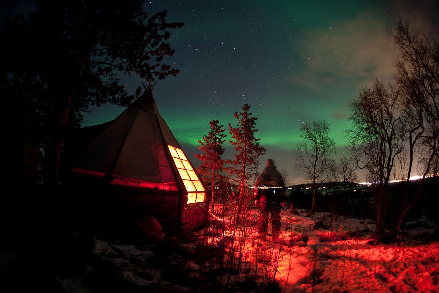 Nordlysbesøk hos Huskyene - Tromsø Villmarkssenter