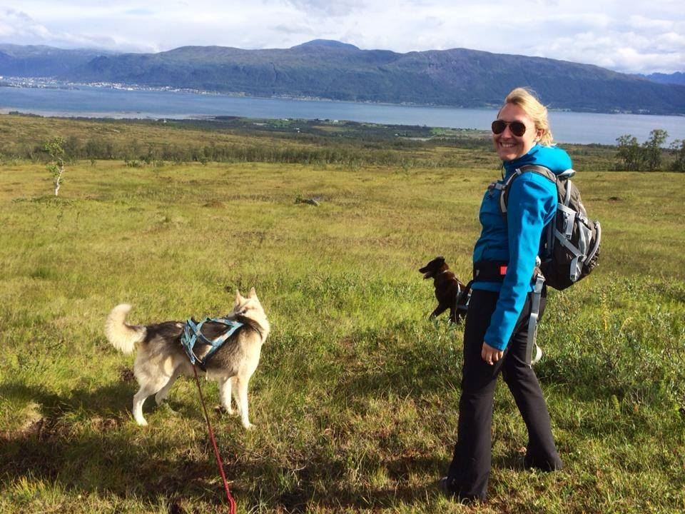 Arktisk vandring med huskyer – Arctic Adventure Tours