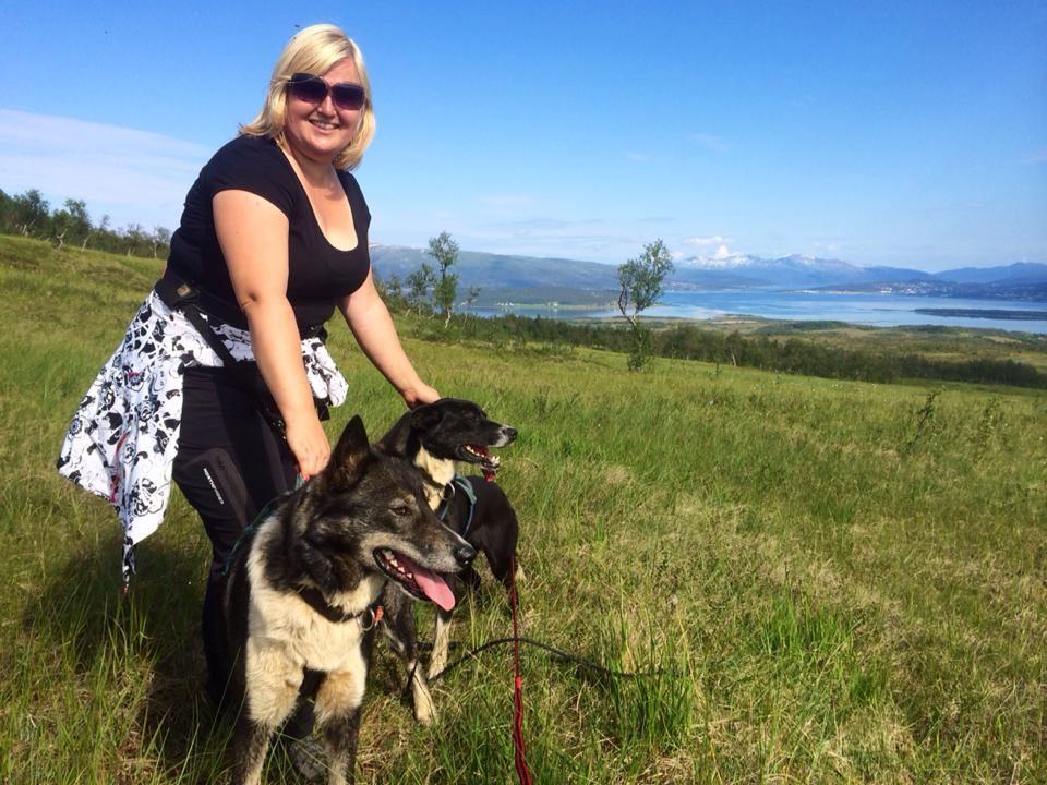 Arctic walk with Alaskan Huskies - Arctic Adventure Tours