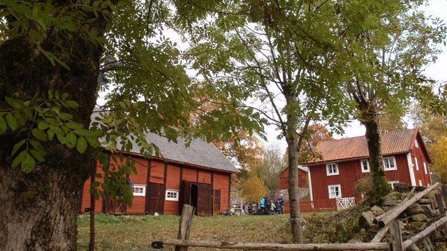 Ire Natur- och Kulturskola.