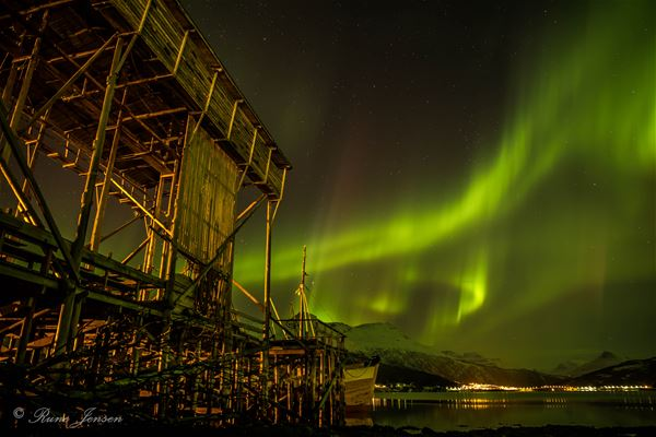 © Foldvik Bryggeferie, Northern Lights over Gratangen