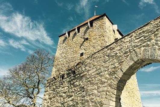 Gotlands museum - Stadsvandringar