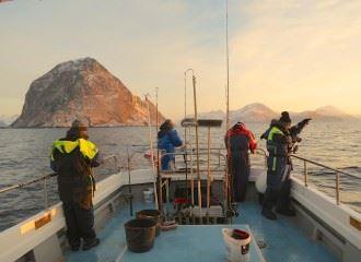 © Sjøtun Brygge, Daglige fisketurer – Sjøtun Brygge