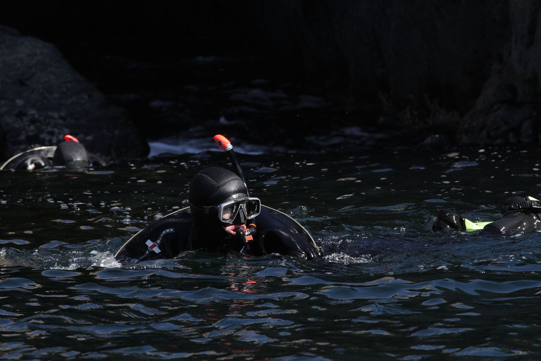Snorkelling from Henningvær