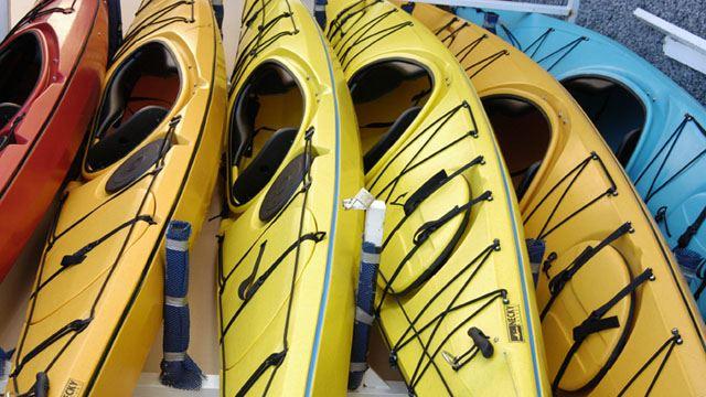 Boat rental & Fishing licences