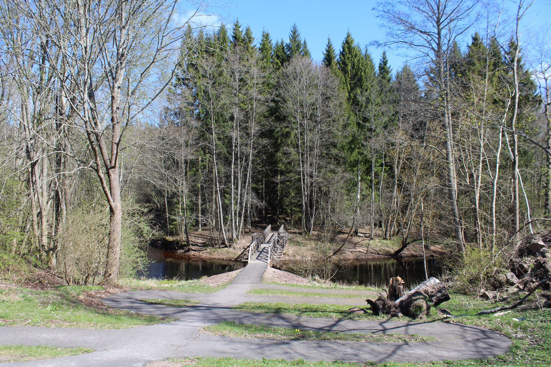 Sebastian Bergström,  © CC BY-SA 3.0, Naturreservat Hulingsryd