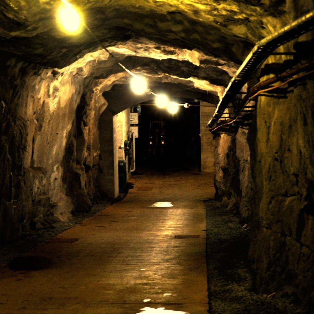 Guidad tur på Hemsö Fästning
