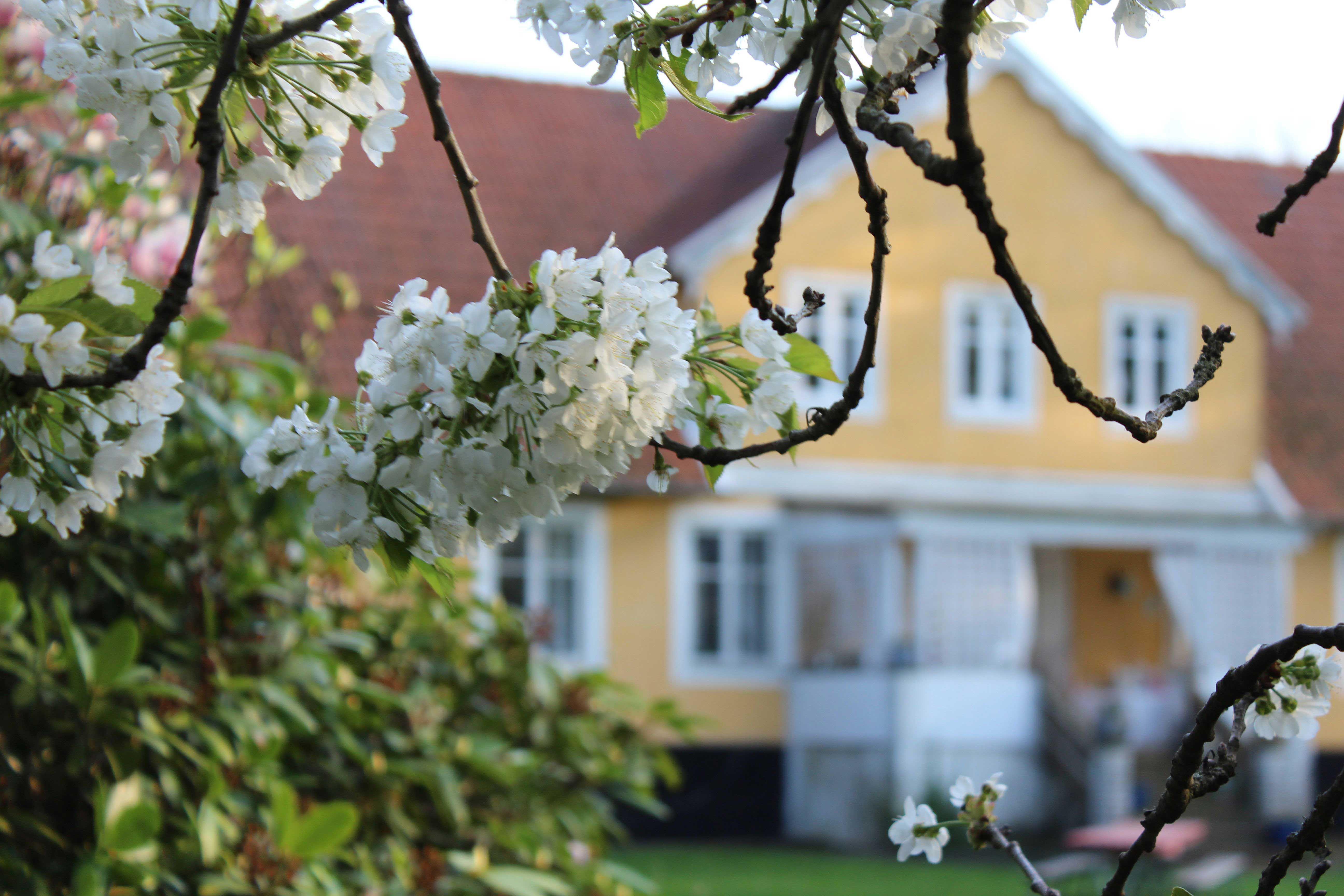 Karlslunds Gård