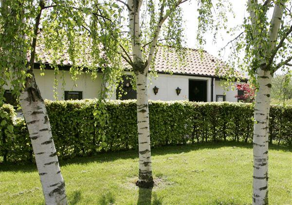 """Das Hotel """"The Cottage"""""""