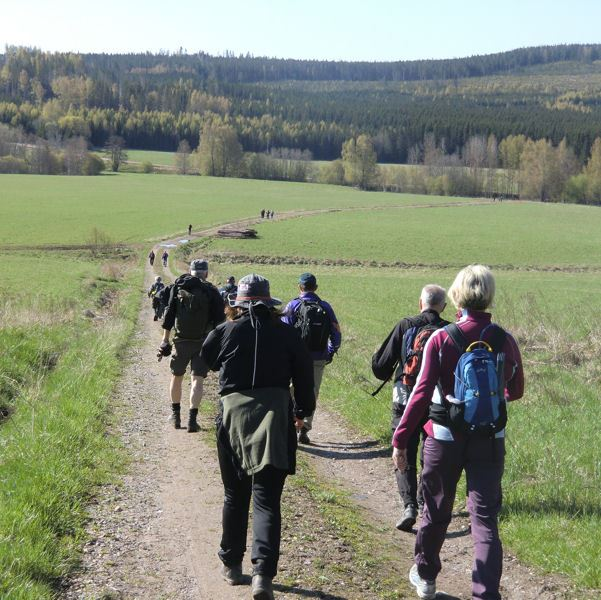 Dalkarlsvägen - vandringsled