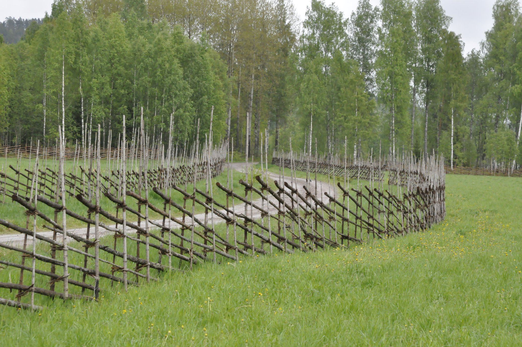 Naturcamping - Långshyttans älgpark