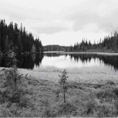 © http://www.lansstyrelsen.se/dalarna/Sv/djur-och-natur/skyddad-natur/naturresvaten/malung-salen/fenningberget/Pages/default.aspx, Fenning-sjö