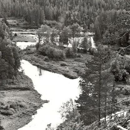 © http://www.lansstyrelsen.se/dalarna/Sv/djur-och-natur/skyddad-natur/naturresvaten/malung-salen/halla/Pages/default.aspx, Hälla