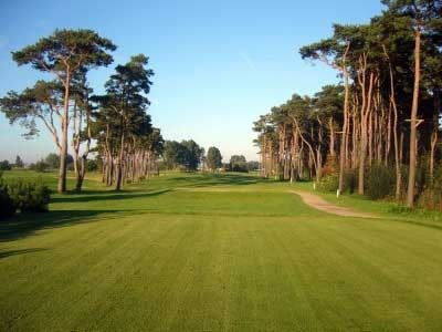 Bedinge GK Golf Club