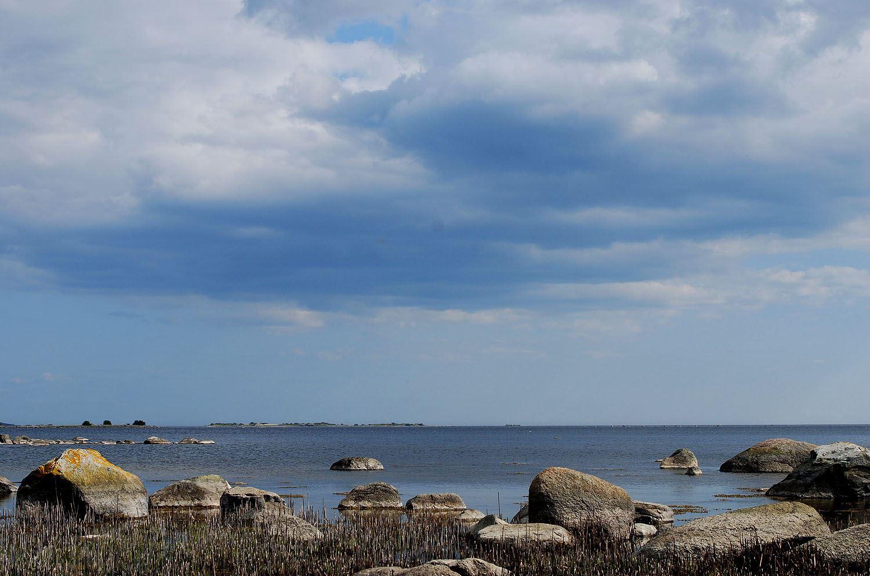 Tobias Delfin, Tomsabo beach, Edenryd