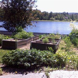 The Herb Garden by Stöde